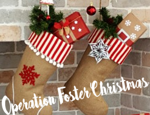 Operation Foster Christmas