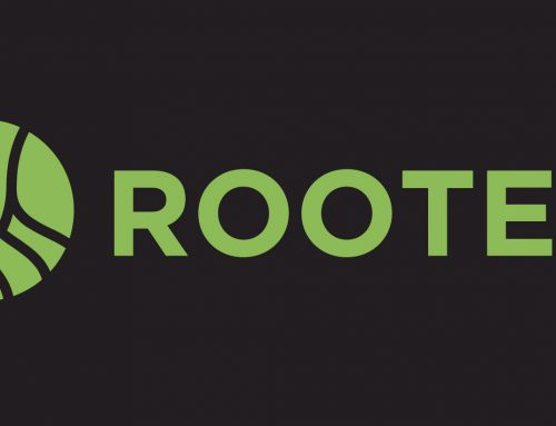 Short-Term Rooted Groups