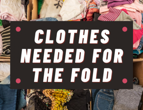 Clothes Needed for The Fold