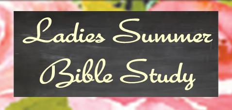 summer Bible study enews image